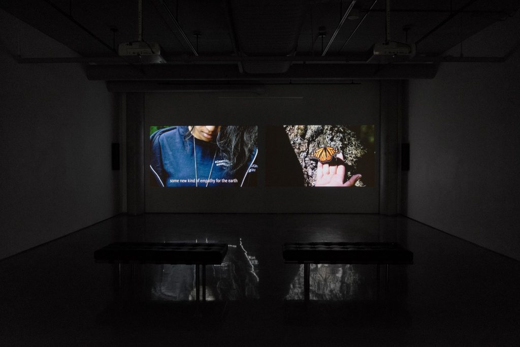 Photo of two-channel video installation